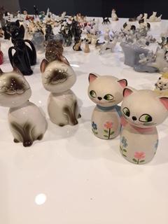 cats_jpeg